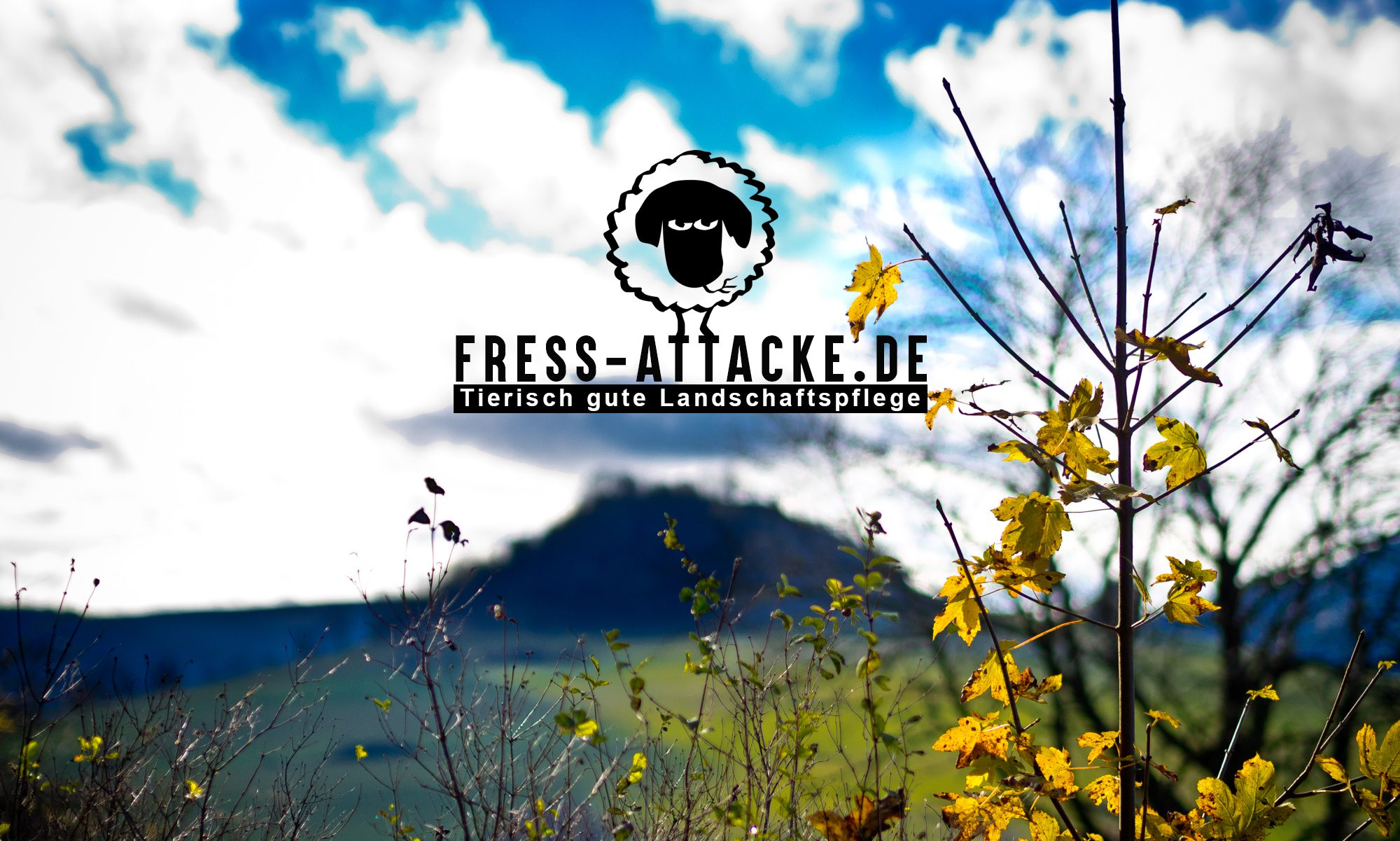 FRESS-ATTACKE